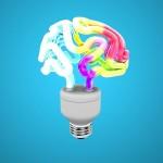 Geen fabeltje: Waarom grotere hersenen beter zijn