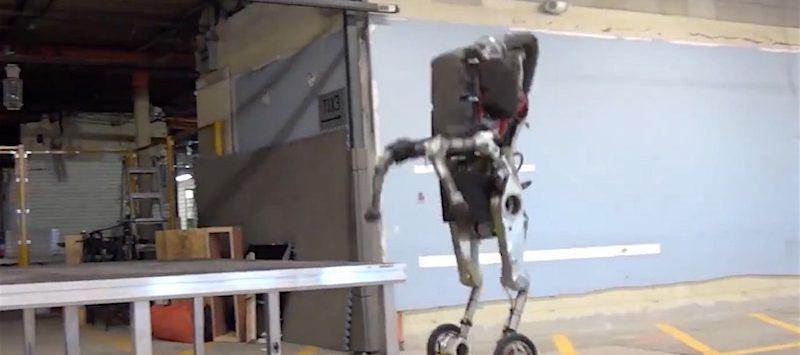 De robots nemen de wereld over: dit is de Handle